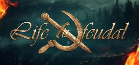 Life is feudal your own steamdb буклет для родителей ролевая игра